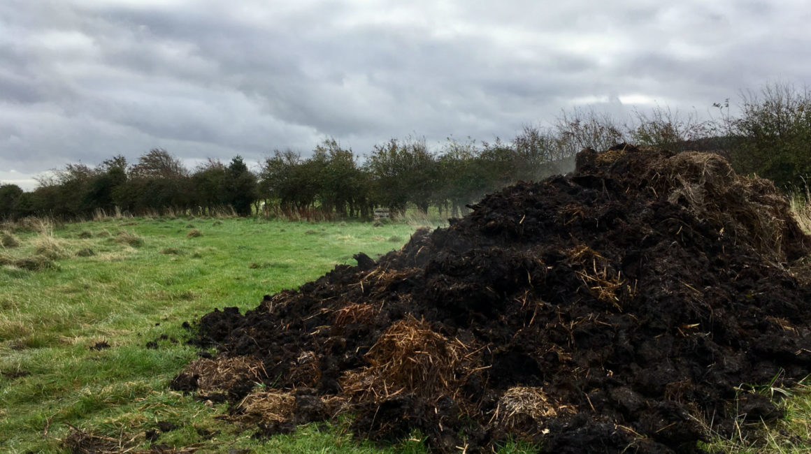 Manure Available Free Allotments South Dublin