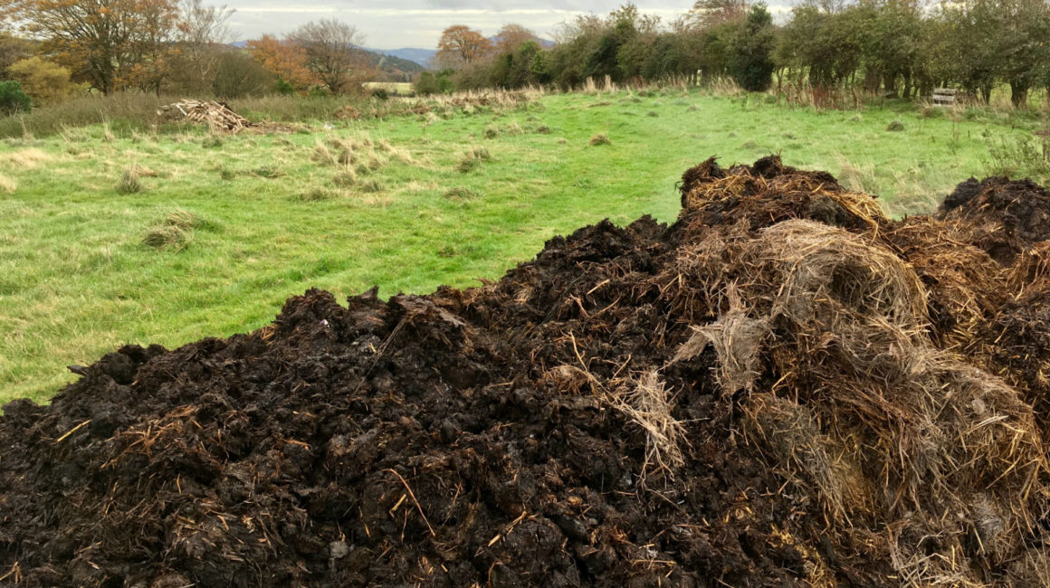 Horse Manure Available Glencullen Allotments