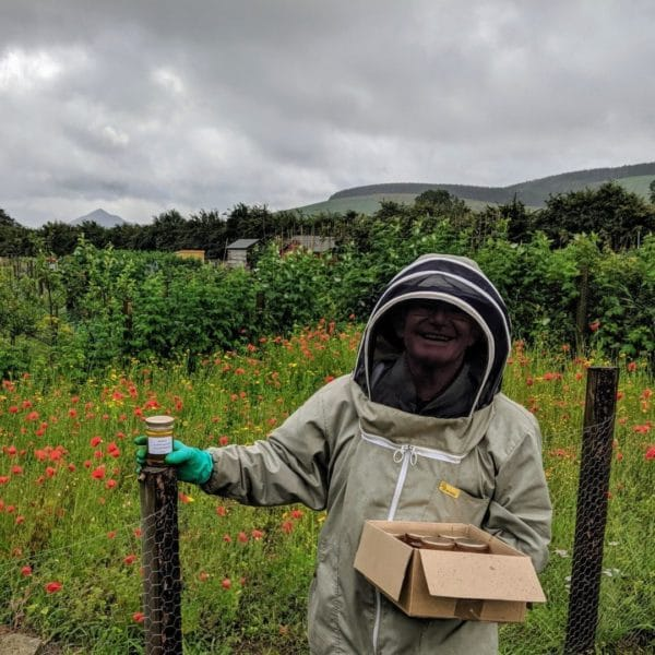 Beekeeping in Glencullen